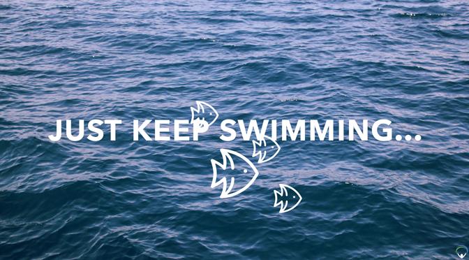 Just keep swimming…
